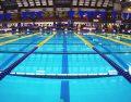 ایمنی در استخرهای شنا
