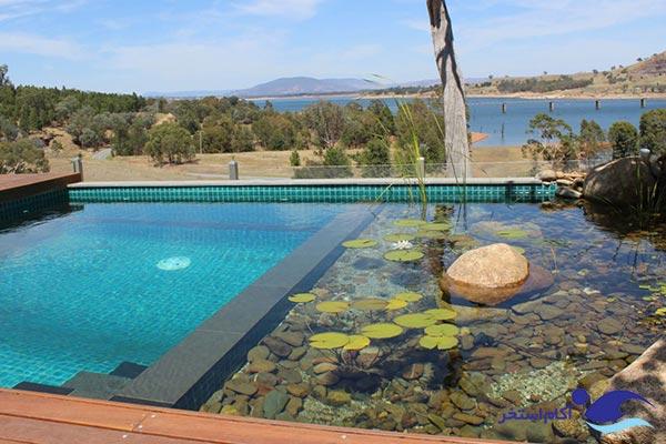 عکس نمونه استخر شنا طبیعی